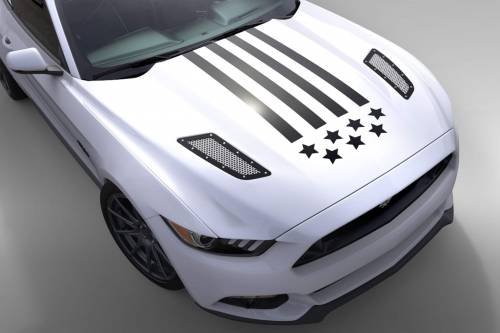 2010-2014 Mustang Parts - Stripes & Decals