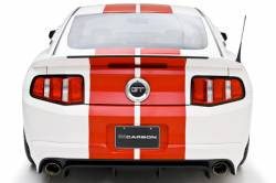 Valance - Rear - 3D Carbon - 10 - 12 MUSTANG BOY RACER- Rear Lower Skirt with Pre-Drilled Backup Sensor Holes