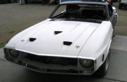 Fiberglass - Shelby - Stang-Aholics - 69 - 70 Shelby Mustang Fastback Fiberglass Kit