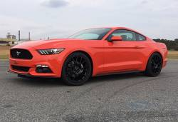 Coil Spring - Performance - Steeda Autosports - 15 Mustang Steeda Sport Springs - Coupe (15 EcoBoost)