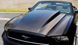 Carbon Fiber - Hood & Related - TruFiber - 10 - 13 Mustang GT500 Carbon Fiber Hood