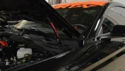 Hood - Hinge - MRT - 2015 Mustang MRT No-Drill Hood Struts-Custom Paint