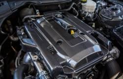 TruFiber - 15 - 16 Mustang Ecoboost Carbon Fiber LG263 Engine Cover