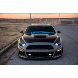 Anderson Composites Mustang Parts - 2015 - 2016 MUSTANG GT350 Carbon Fiber Hood