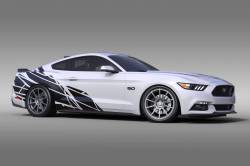 Stripes & Decals - Body Graphics Kits - OG Innovations - Universal Mustang Vinyl Graphics - Wasteland