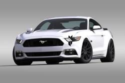 Stripes & Decals - Body Graphics Kits - OG Innovations - Universal Mustang Vinyl Graphics - Battle Scar