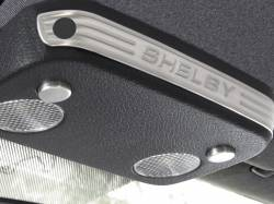 Drake Muscle Cars - 05 - 07 Mustang Shelby Aluminum Map Light Accents-Active Anti Theft