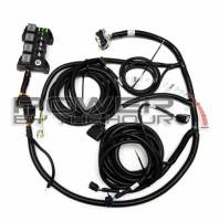 Electrical & Lighting - Wire Harnesses - Engine Related